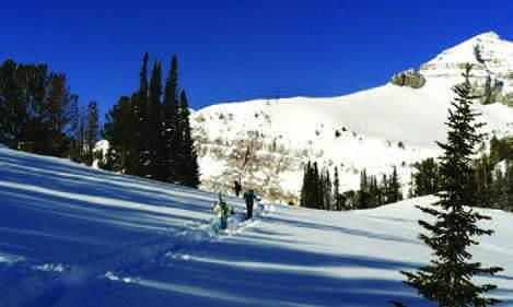 Schools of Skiers