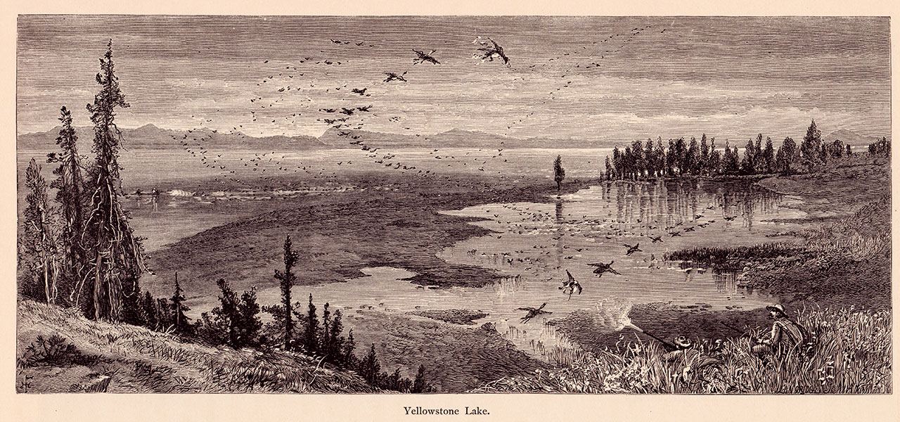 Hayden Survey members shoot waterfowl on Yellowstone Lake in 1871. Illustration by Thomas Moran.