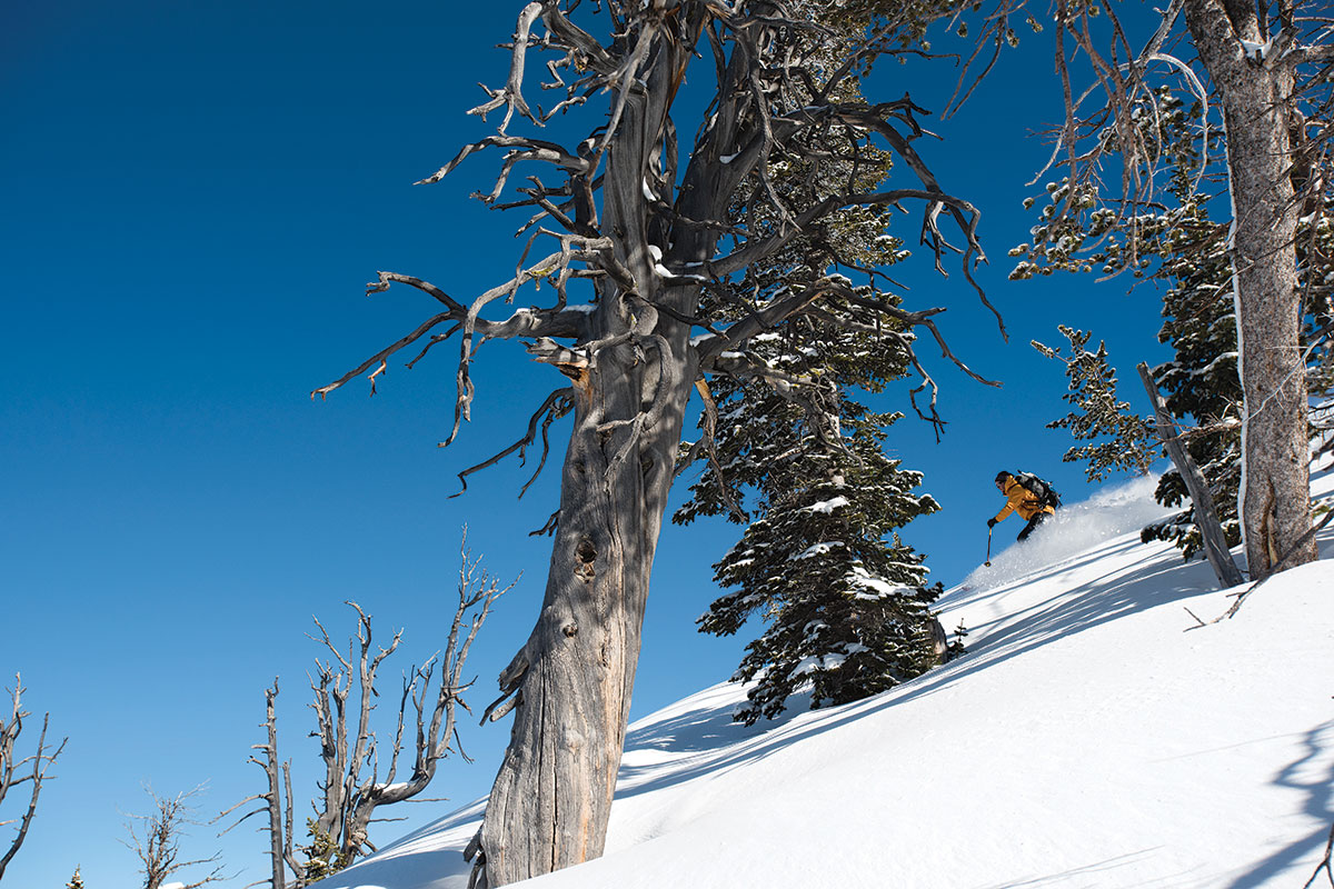 High Mountain Heli-Skiing's permit areas cover 305,000 acres, 122 times larger than Jackson Hole Mountain Resort.